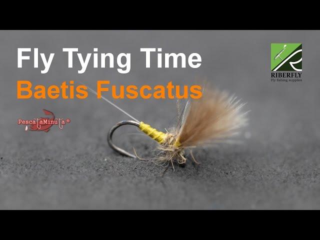 RIBERFLY - Fly Tying Time Cap. XII - Baetis Fuscatus