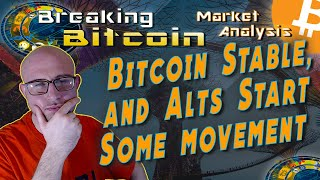 Breaking Bitcoin Market Update - Bitcoin Holding $8,000 As Altcoins Celebrate Christmas - Live TA