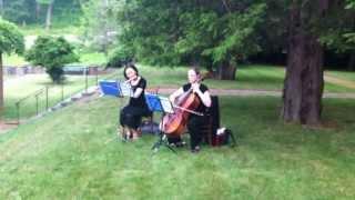 Canon in D - Flute, Cello Duo