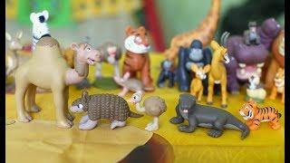 Животные дикой природы № 22, 23, 24 и 25