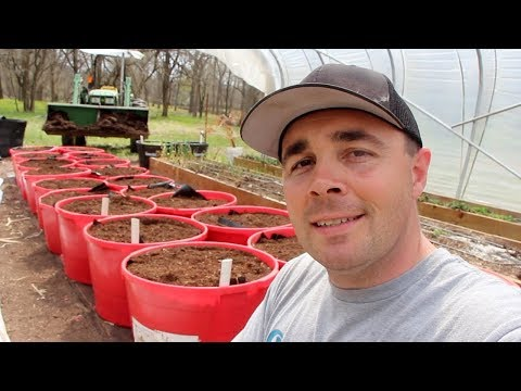 How to Build the BEST Self Wicking Containers! DIY Self Watering Tubs