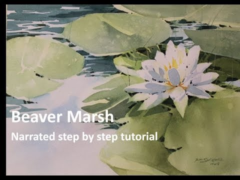 "Download Watercolor Tutorial, "" Beaver Marsh Lilly Pad"", Narrated Transparent Watercolor Tutorial"