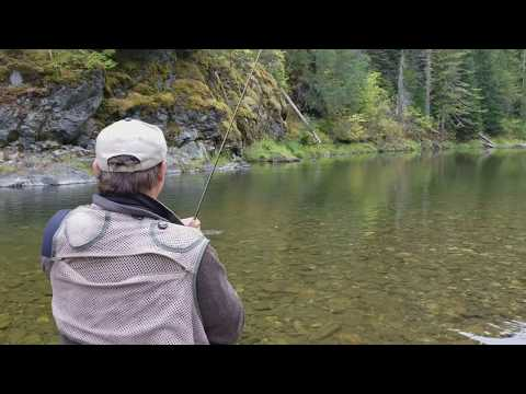 Catching A Cutthroat Trout On The St. Joe River In Idaho