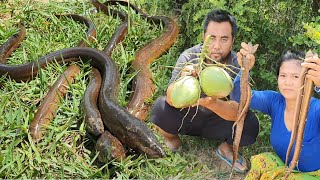 New recipe - finding eel with coconut for cooking & eat - Eating delicious