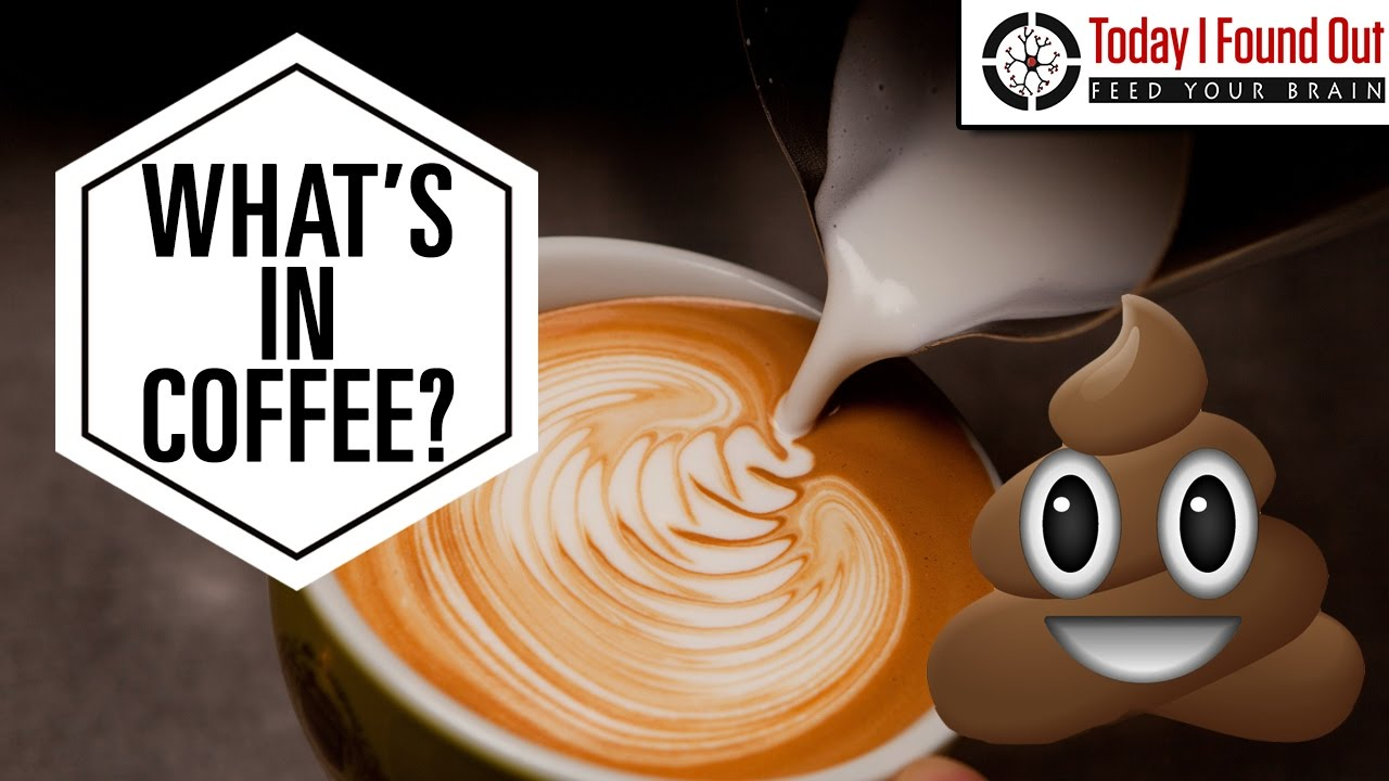 Does caffeine make you go to the bathroom - Why Does Coffee Make You Poop