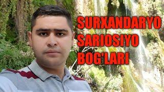 SURXANDARYO SARIOSIYO BOG