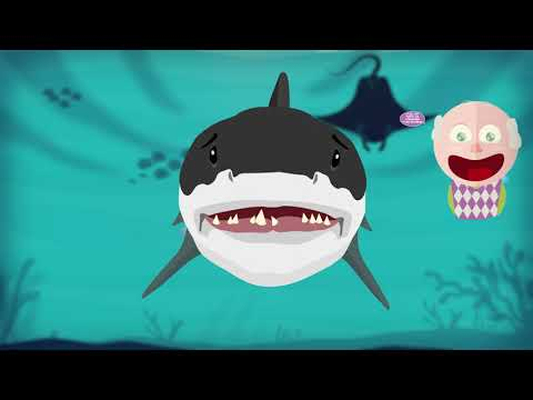 Are your teeth stronger than Shark's?