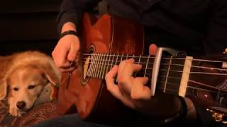Linkin Park - Numb (Fingerstyle Guitar)