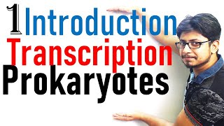 Transcription in prokaryotes introduction | transcription lecture 1