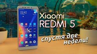Обзор Xiaomi Redmi 5 - 2 недели с идеальным бюджетником!