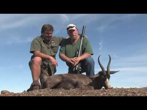 Black Springbuck hunt