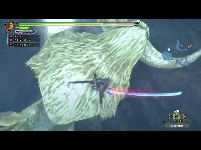 Monster Hunter 3U - Part 17 - Caedeus