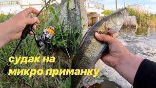 Судаки и окуни на микроджиг Весенняя рыбалка
