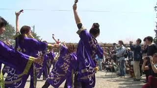 桜満開の松阪城跡で宣長まつりが開かれました。踊りイベントでは「松阪...