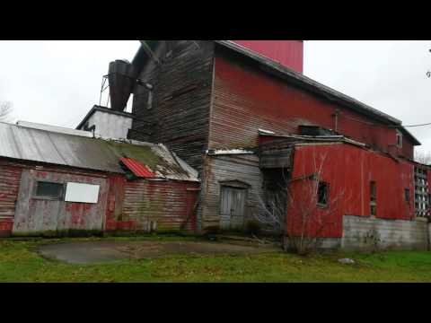 Weird find while exploring abandoned  railroad in almont