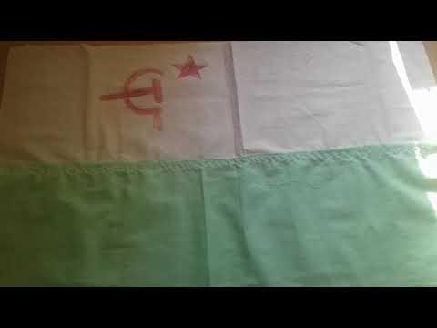 Флаг Сибирской Советской Социалистической Республики.