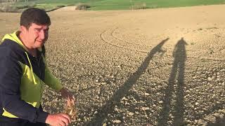 Soğan ekimi 2. Bölüm