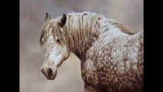 "Слайд шоу ""Красота лошадей"""