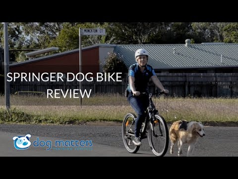 Springer Dog Bike Attachment Review 1 Youtube