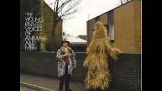 Young Knives - Weekends & Bleak Days (Hot Summer)