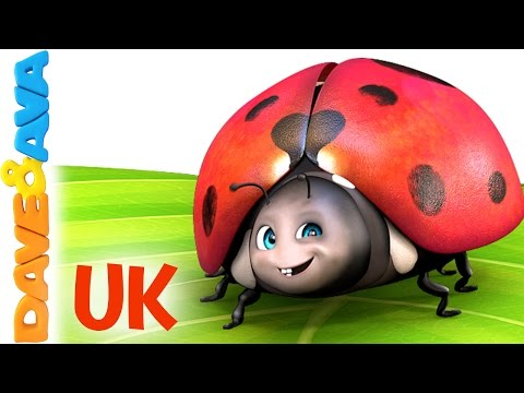 Thumbnail: 😊 Five Little Ladybirds| the UK Version | Popular Kids Songs from Dave and Ava 😊