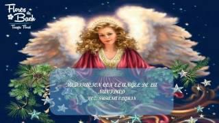 MEDITACION CON EL ANGEL DE LA NAVIDAD