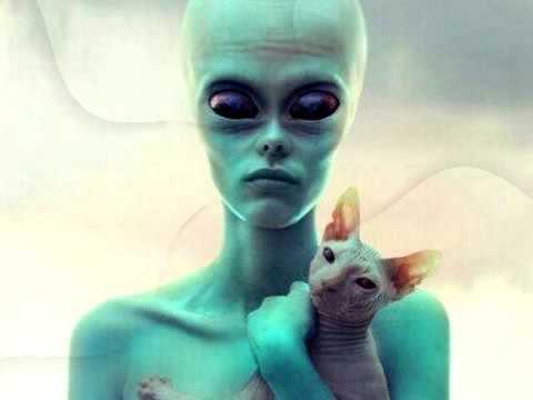 ИНТЕРЕСНЫЕ НОВОСТИ!!! Людей с отрицательным резус-фактором крови создали инопланетяне!!!