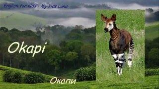 Дикие животные Африки. Животные в Джунглях. Часть 3. Английский язык для детей.