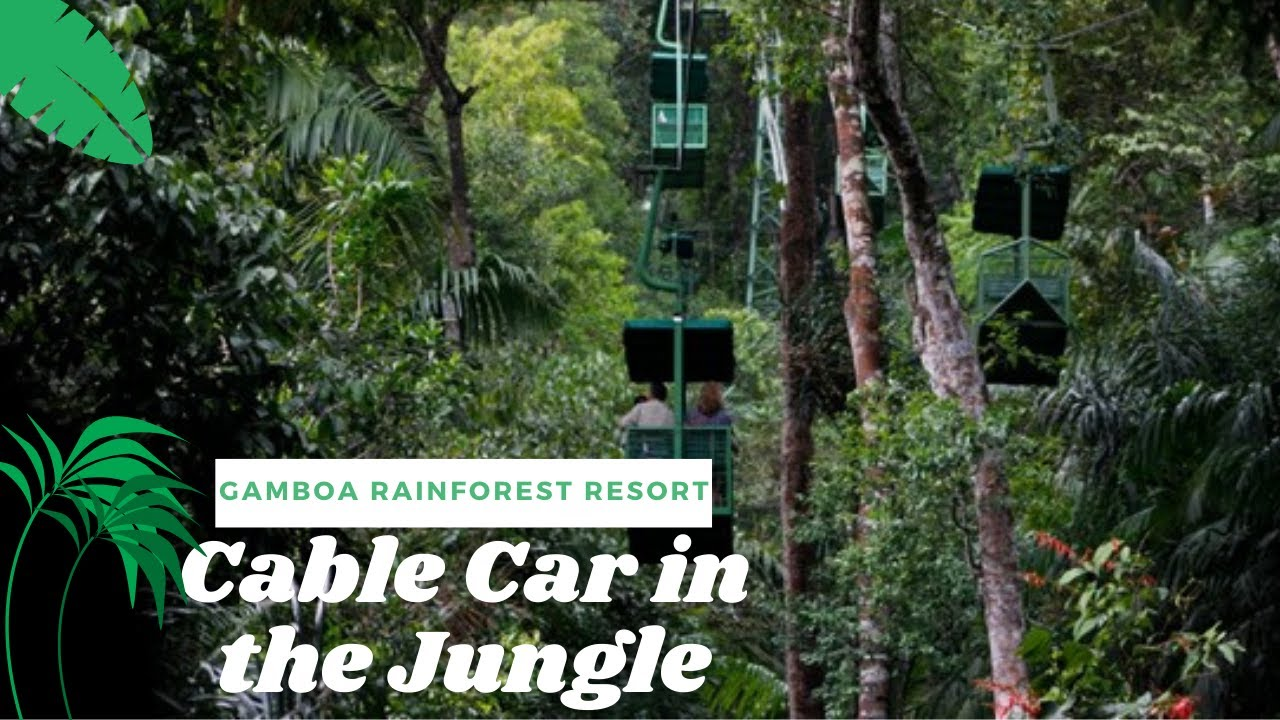 Cable Car in a Jungle (Gamboa Rainforest)