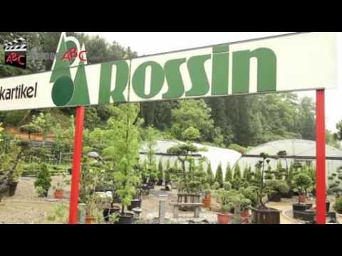 Pflanztipps vom holl nder pflanzencenter doovi for Pflanzencenter berlin