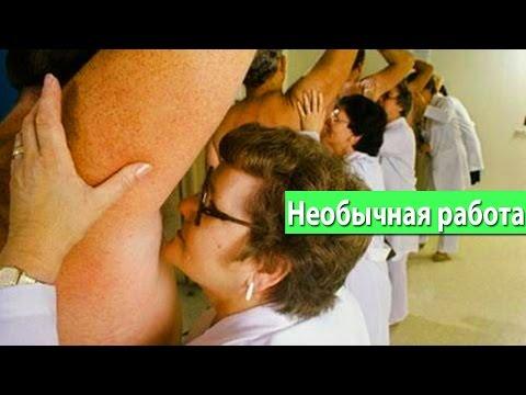 Водитель - вакансии работа в Москве, ищу работу водителя