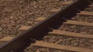 A câmera - Arthus Fochi (Clipe Oficial)