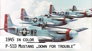 Four P-51D Mustang fly in a line (SFP 186)
