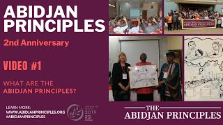 Abidjan Principles On The Right To Education: What Are They?