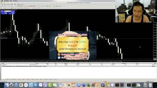 FOREX CHỨNG MINH GIAO DỊCH LIVE