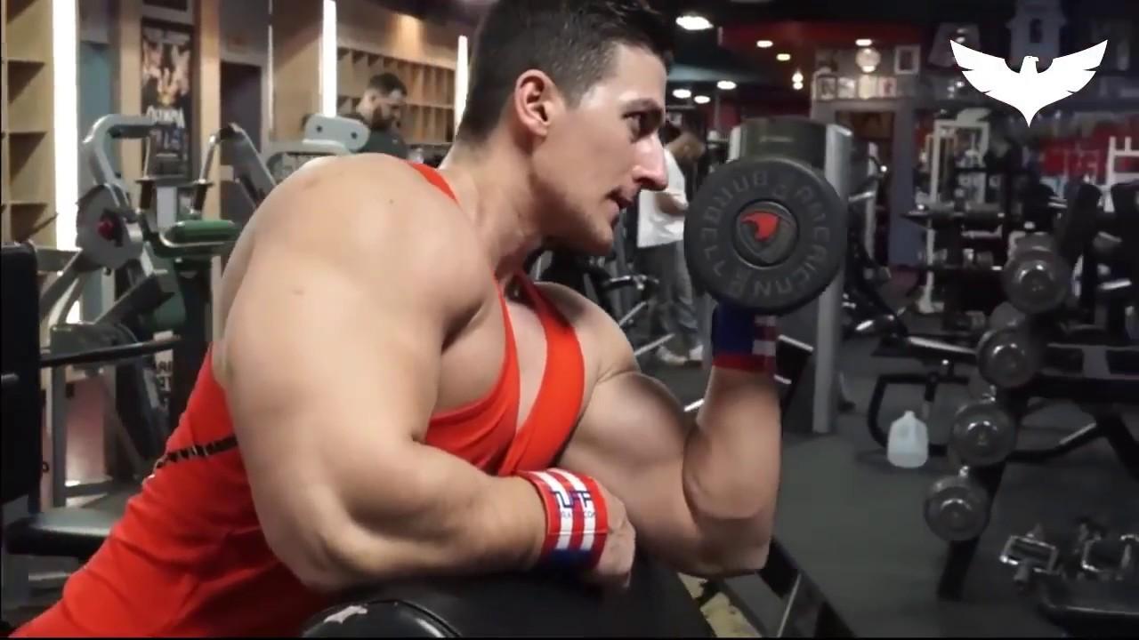 Arm Workout - Sadik Hadzovik ????