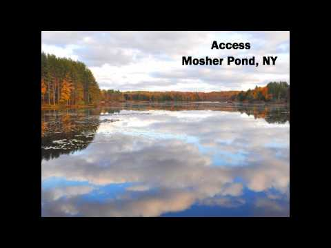 New York Hunting Properties Hunting Property NY Land Sale