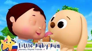 Учим животных! | Мои первые уроки | Детские песни | Little Baby Bum