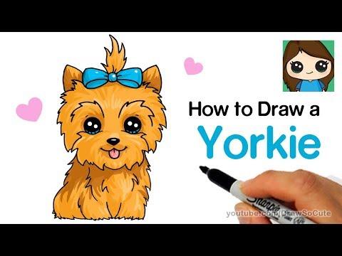 How To Draw A Yorkie Easy | JoJo Siwa's BowBow