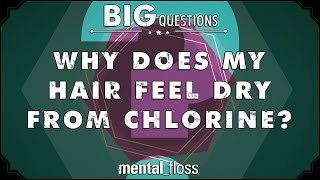 why does my hair feel dry from chlorine big questions ep 205