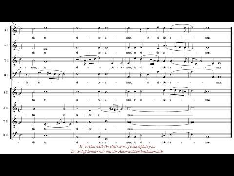 De Victoria | Ave Maria [á 8; Magnificat Ensemble]