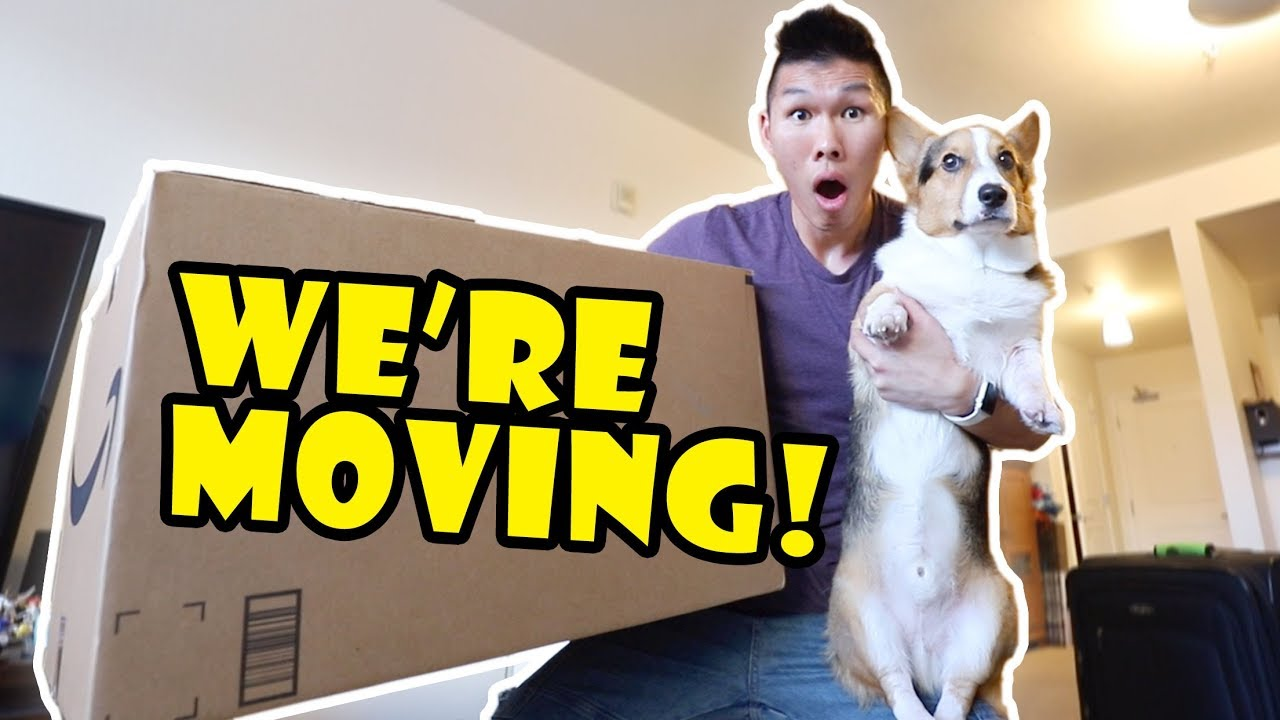 we-re-moving-new-year-new-home-announcement-life-after-college-ep-624