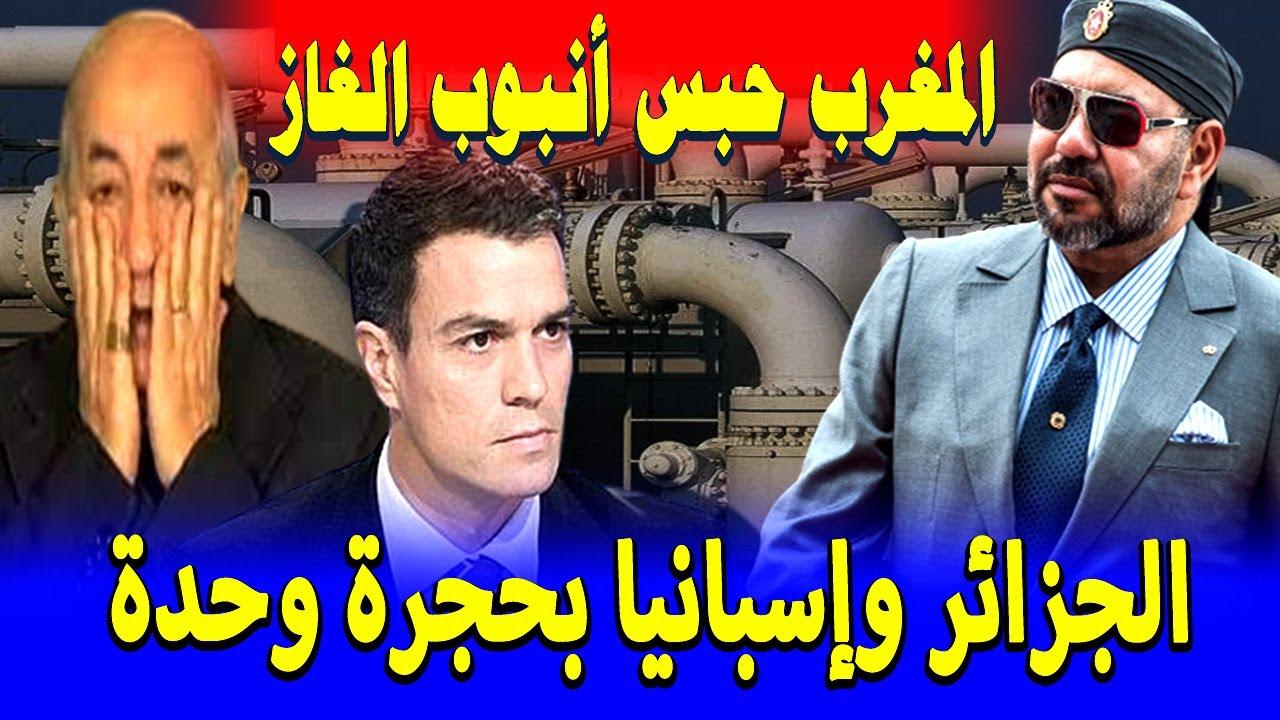 الملك محمد السادس يفاجئ اعداء الوطن .. ضربات موجعه للجزائر وإسبانيا