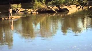 Video Pescaria Uruaçu-GO Rio das almas download MP3, 3GP, MP4, WEBM, AVI, FLV Juli 2018
