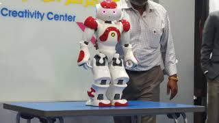 The Kung Fu robot