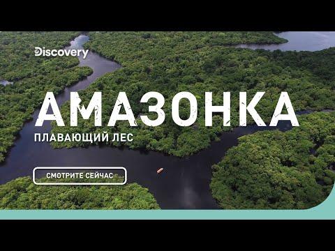 Амазонка: плавающий лес | Неизведанные острова | Discovery Channel