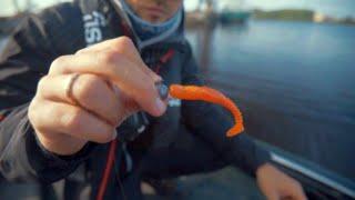 Geriausi Latvijos žvejai dalijosi patirtimi, kaip gaudyti žuvis spiningu