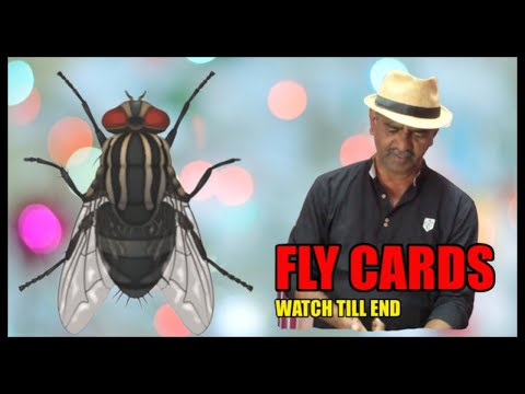 MAGIC TRICKS VIDEOS IN TAMIL 2020 I FLY CARDS I தமிழ் மேஜிக் I@Magic Vijay