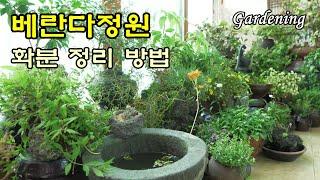 SUB) 베란다 정원 이쁘게 꾸미기, 화분 자리 배치 …