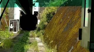 【前面展望】湘南モノレール 湘南江ノ島→大船 2020年9月